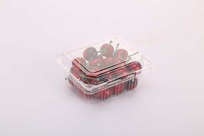 Plastic Thermoforming Packaging for Fruit and Vegetable