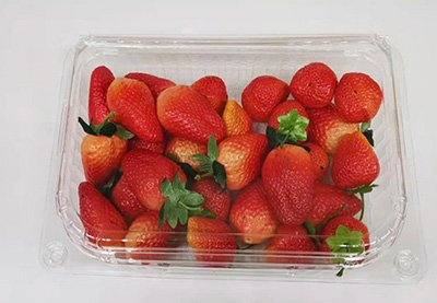 Strawberry tray