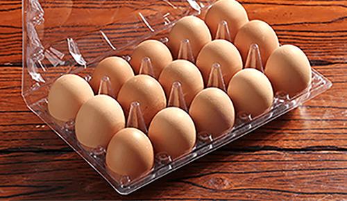 Thermoforming Egg Tray