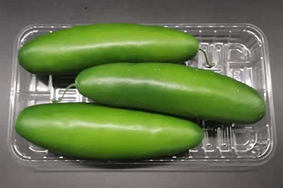 Wax gourd tray