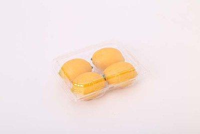 blister forming lemon packaging
